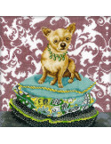 Kit RTO - Interior dogs - chihuahua ginger