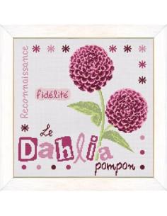 Lili Points - Le Dahlia Pompon