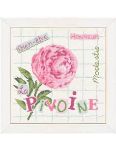 Lili Points - Cross stitch pattern - La Pivoine
