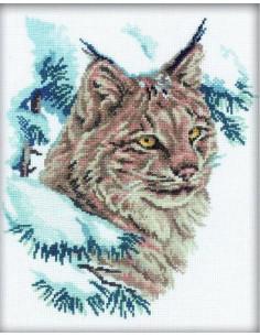 RTO - Kit point de croix - Lynx