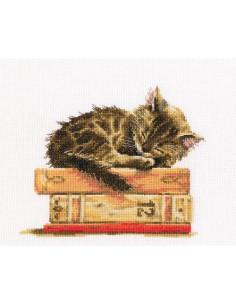 RTO - Kit point de croix - Cat's dream