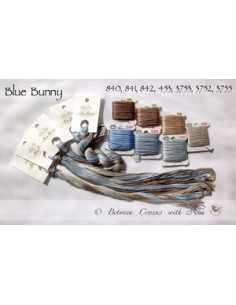 Fil Nina's Threads - coton mouliné - Blue Bunny