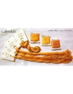 Fil Nina's Threads - coton mouliné - Calendula