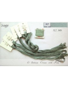 Fil Nina's Threads - coton mouliné - Sage