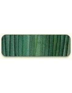 Di van Niekerk - Ruban de soie 2 mm - 126 - Forest Shade