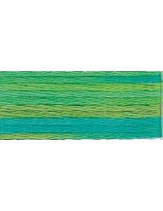DMC Mouliné Color Variation - 4050