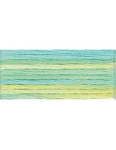 DMC Mouliné Color Variation - 4060