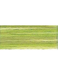DMC Mouliné Color Variation - 4070