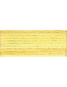 DMC Mouliné Color Variation - 4075