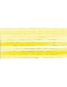 DMC Mouliné Color Variation - 4077