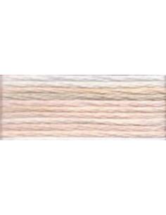 DMC Mouliné Color Variation - 4150