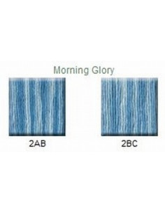 House of Embroidery - coton mouliné - Morning glory