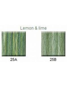 House of Embroidery - coton mouliné - Lemon & Lime