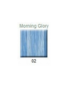 House of Embroidery - Morning Glory