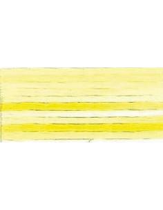 DMC perlé Color Variation - 4077
